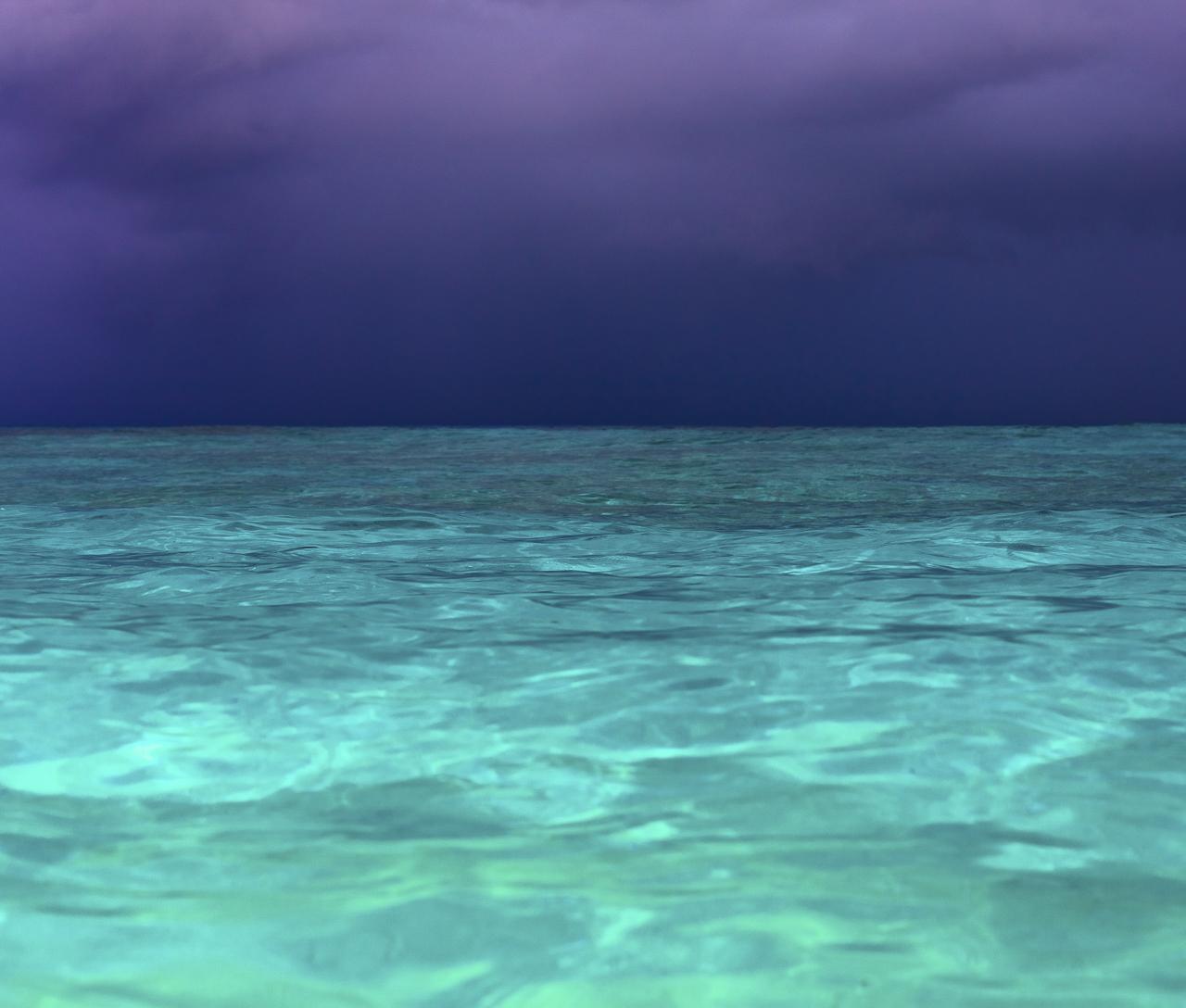 020_Sarah_Lee_Photography_Underwater_1.jpg
