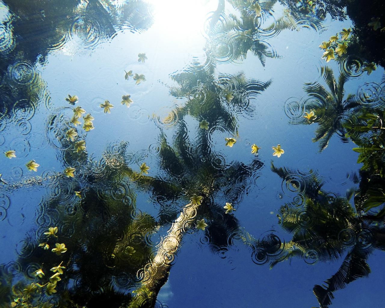 018_SarahLeePhoto_Landscape_Ocean_Photos_0016304.jpg