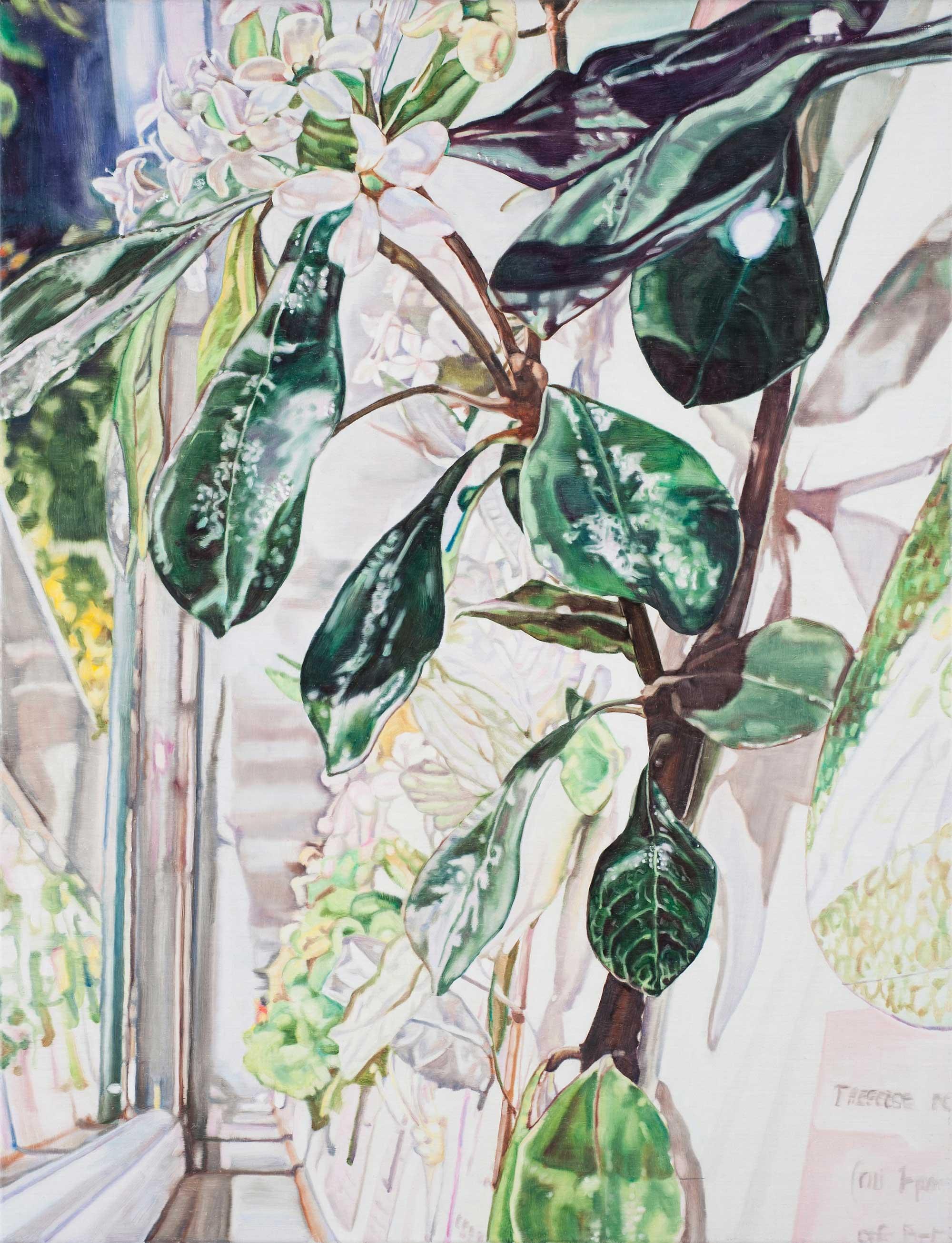 Hanging Garden #1 , 2013 86 x 66cm Oil on Linen