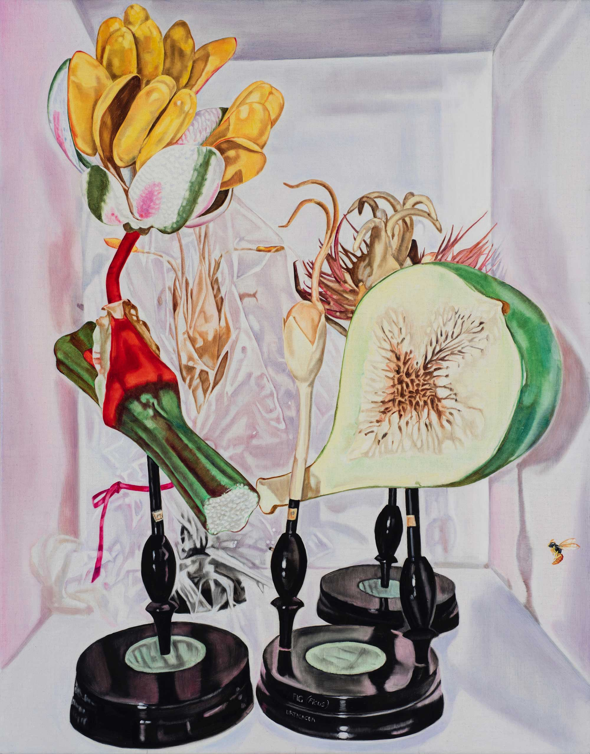 Still life with fig and wasp,  2018  84 x 66cm oil on linen