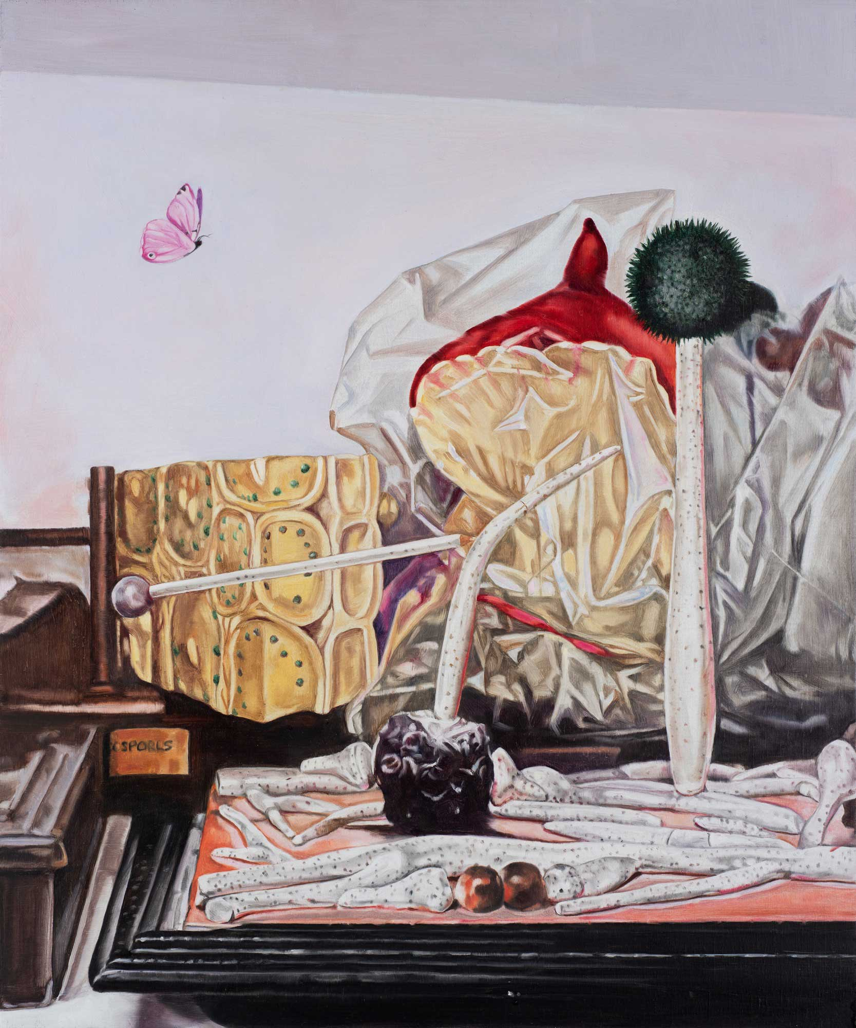 Still life with fungi and butterfly,  2019 66 x 56cm oil on linen