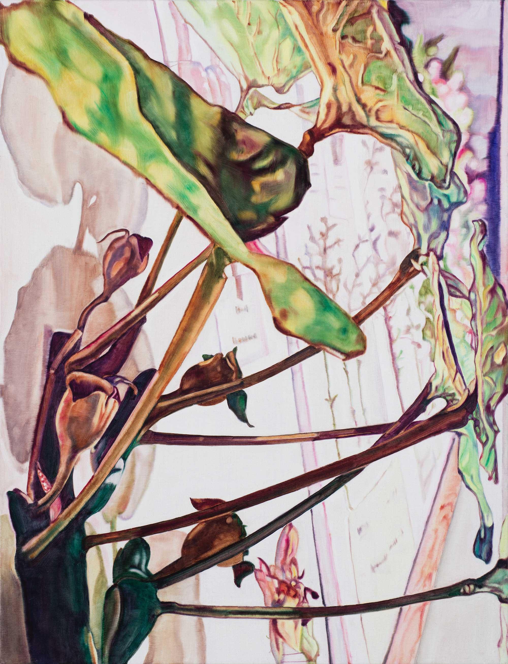 Hanging Garden #3 , 2014 86 x 66cm oil on linen