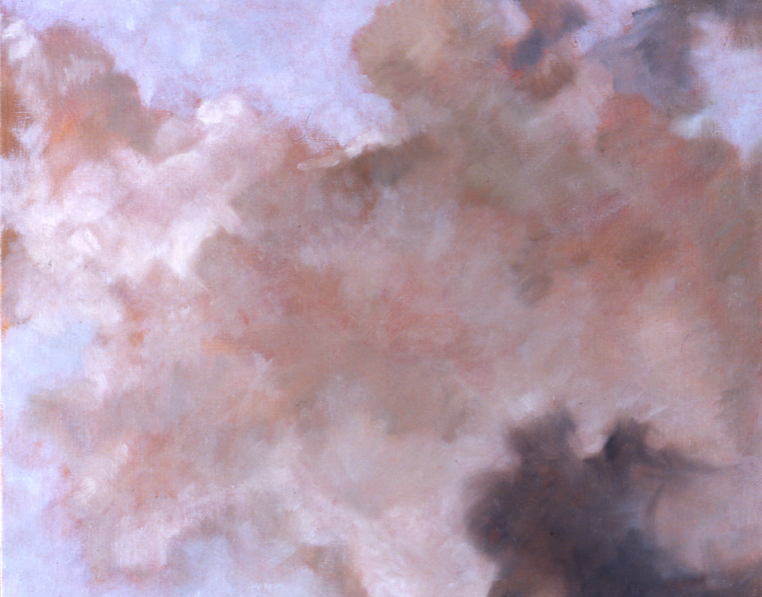 Looking Up  (detail), 1993 51 x 66cm oil on linen