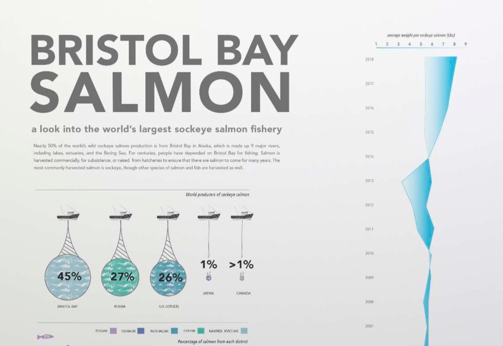 Salmon Infographic - A visual representation of the salmon industry