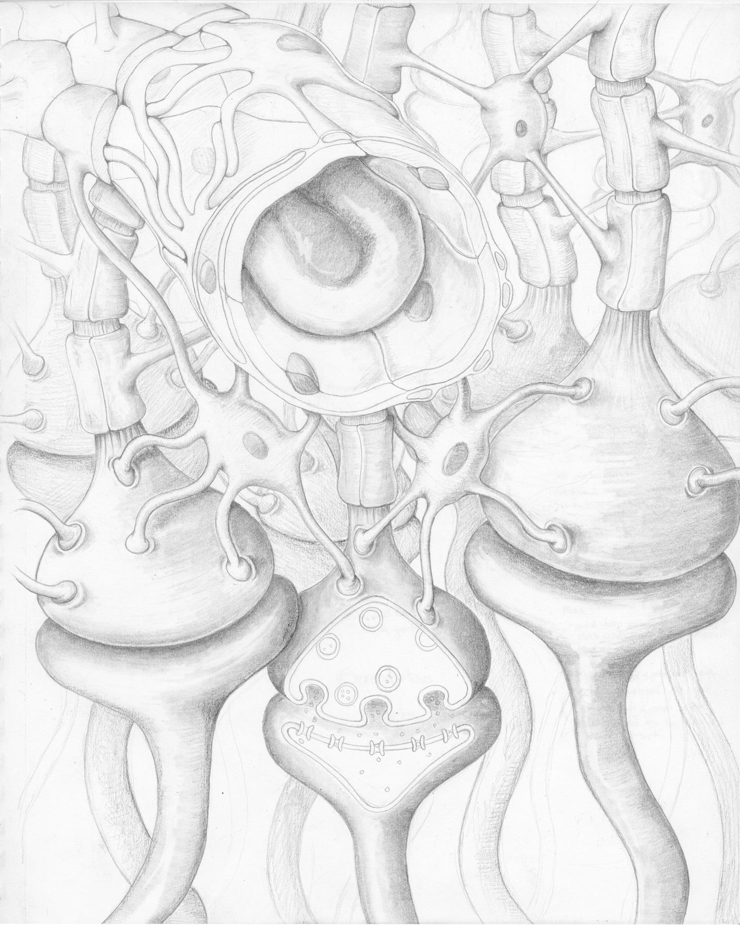 Molecueler-sketch.jpg