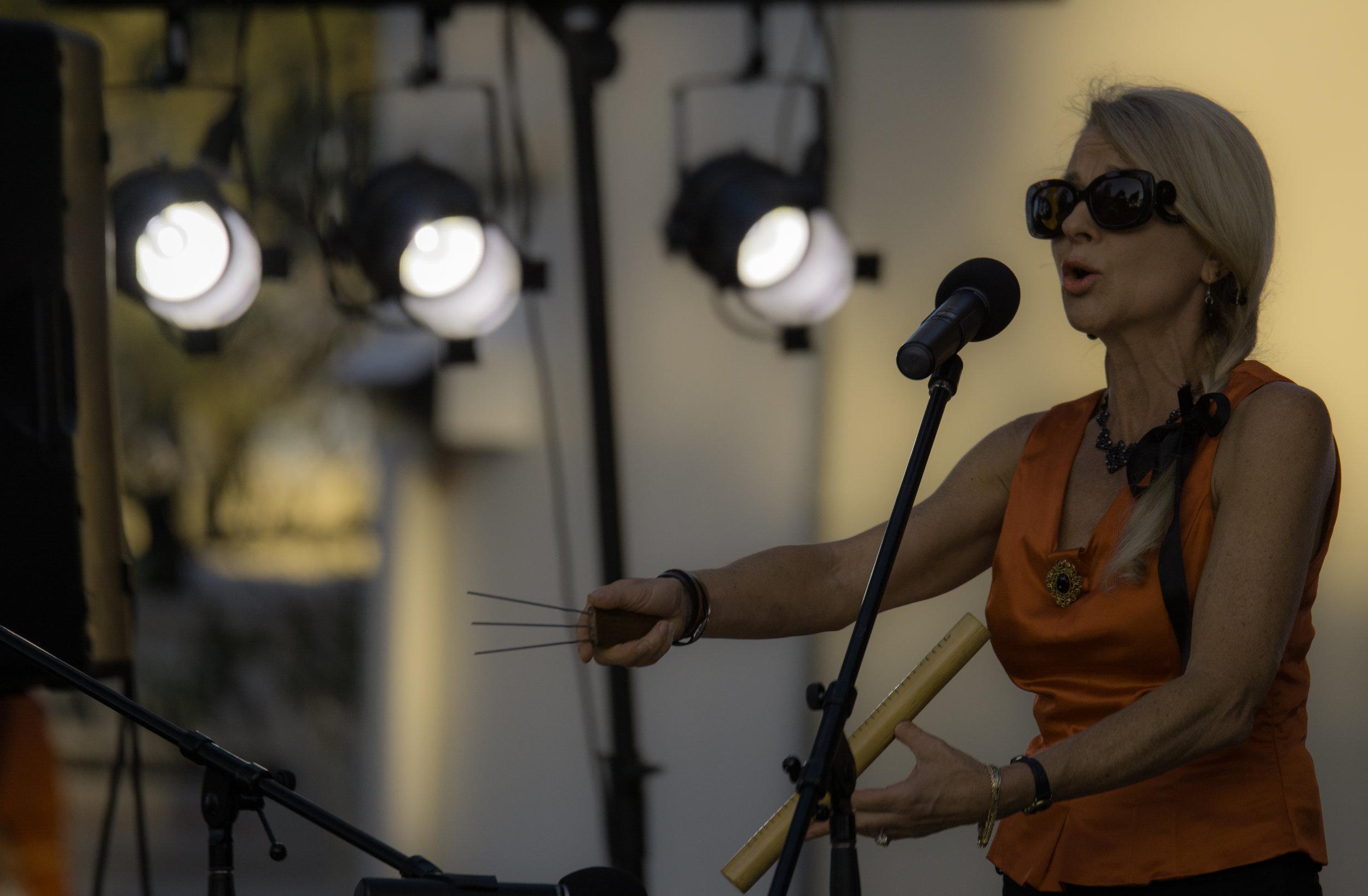 Narellan Festival 2015 #3.jpg