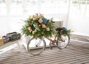 Vélo_fleuri.jpg