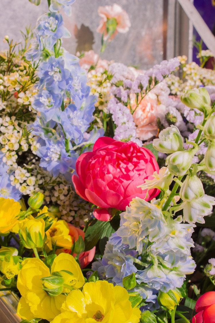 flowers-details-pampa.jpg