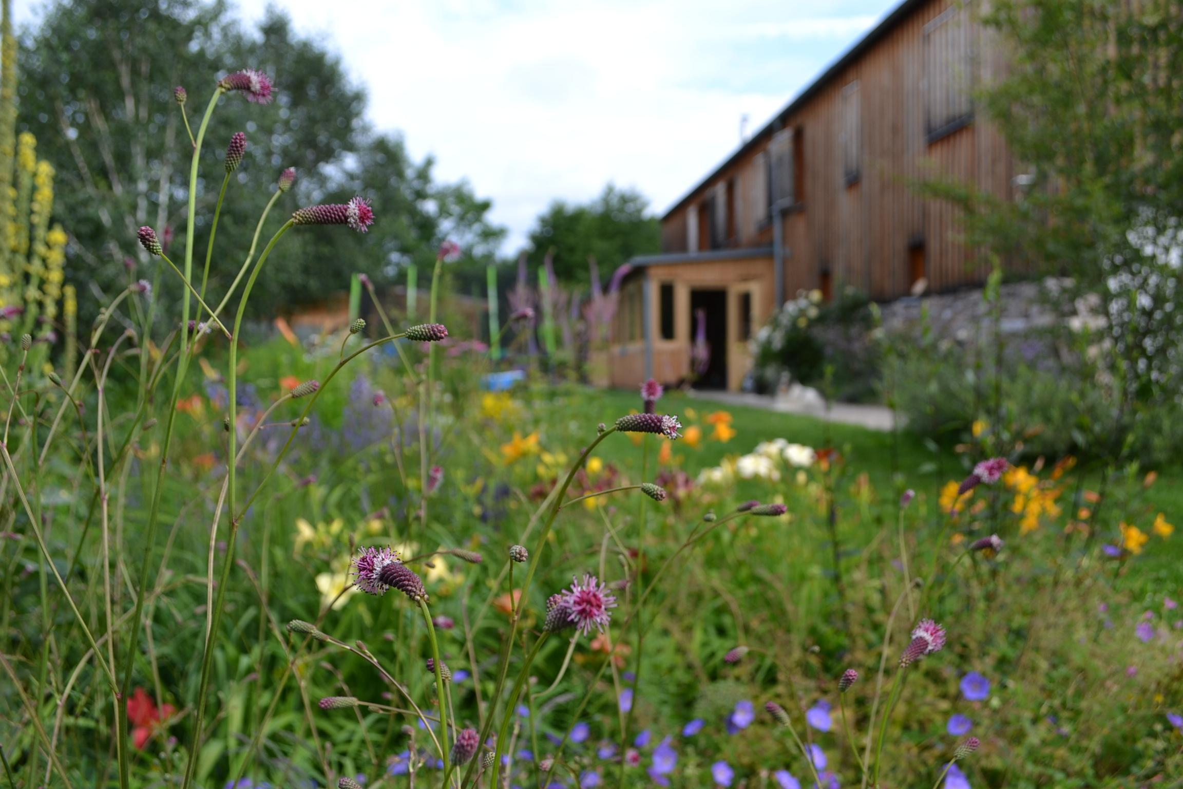Zahrady - Zahrada je cesta