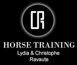 logo-horse-coaching.jpg