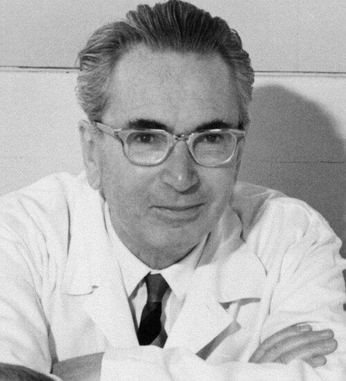 Foto: Wikipedia/Prof. Dr. Franz Vesely
