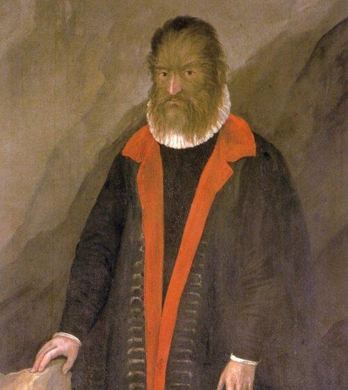 Petrus Gonsalvus, nepoznati autor