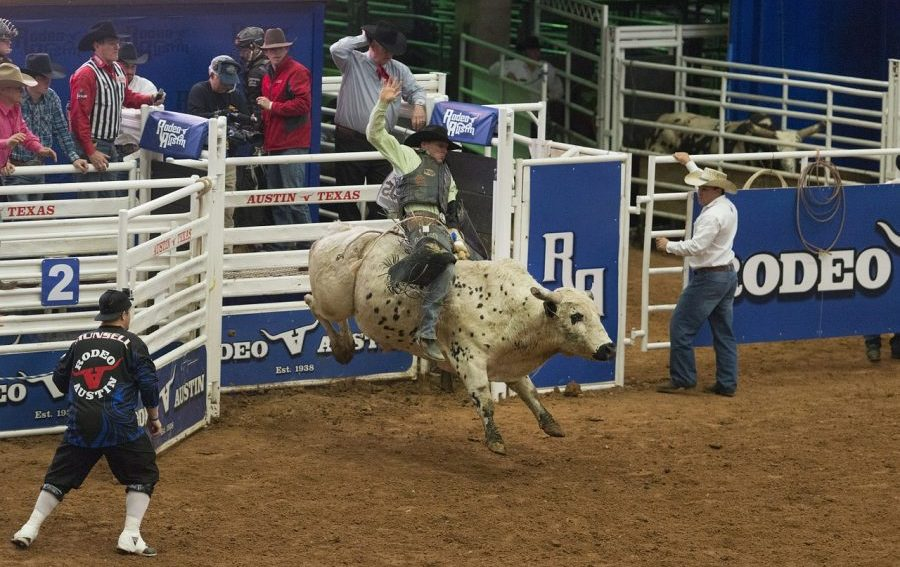 bull-riding-584403_1280-e1537951952755.jpg