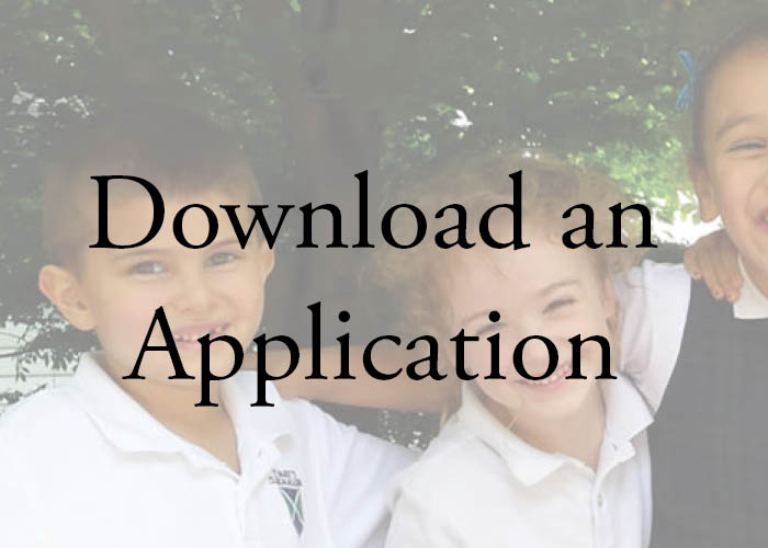 download an application.jpg