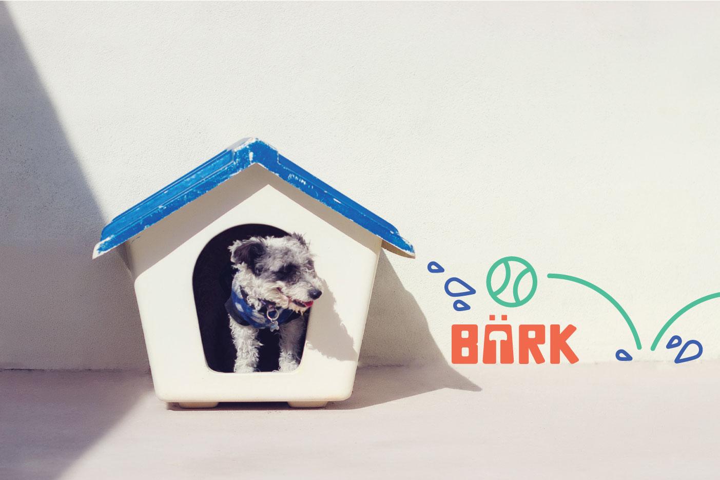 bark-wall-art.jpg