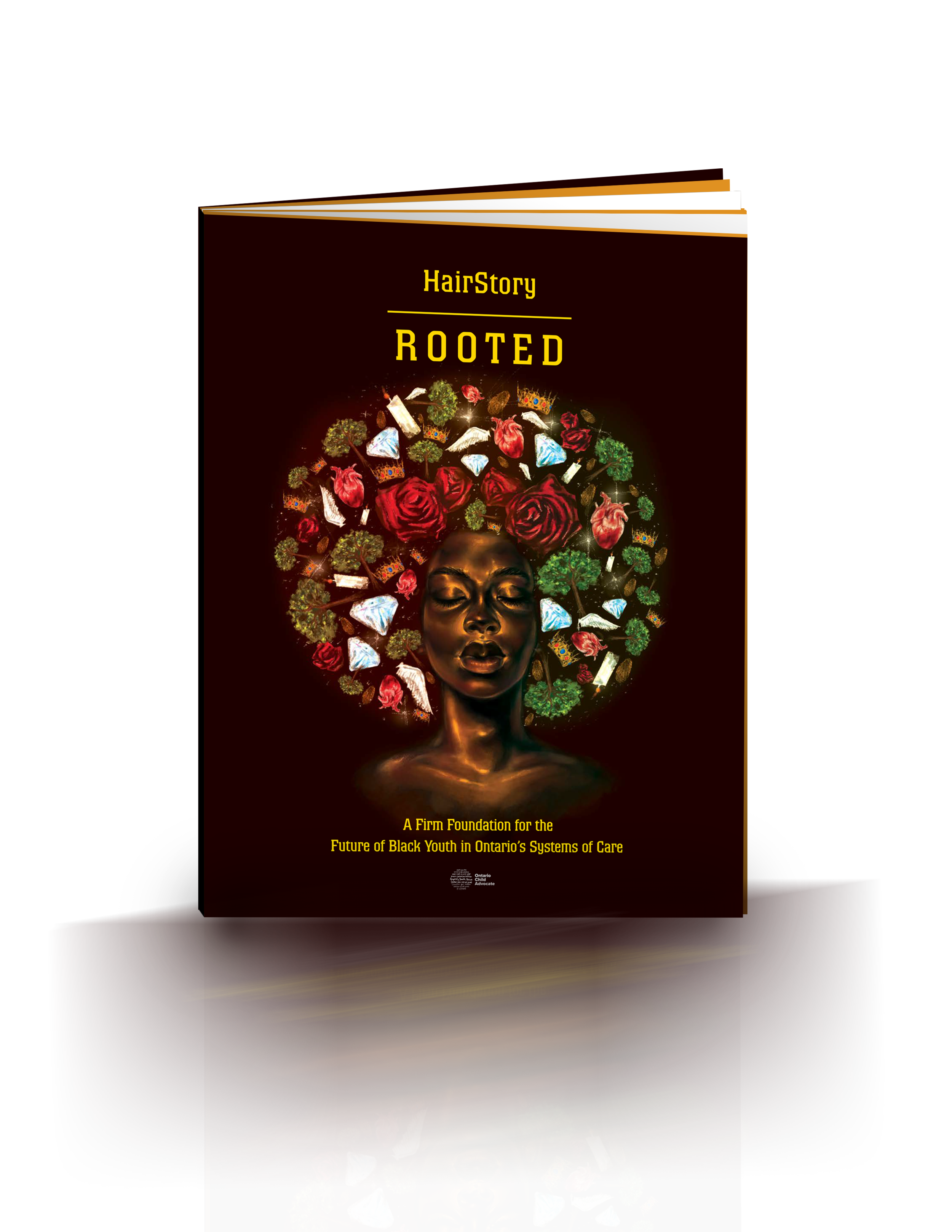 HAIRSTORY RELEASES REPORT - HairStory: ROOTED - A Firm Foundation for the Future of Black Youth In Ontario's Care Systems released March 20, 2019click on image to read the report.