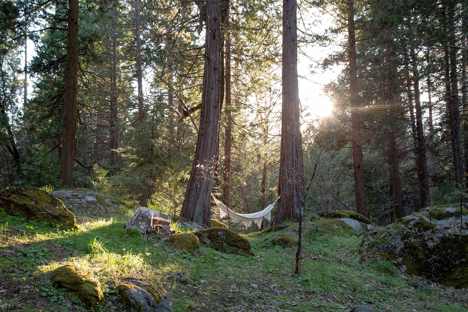 A Self Guided Retreat - Get into your most authentic, worthy, intuitive self and be immersed in Nature.