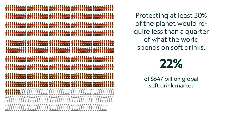 Benefícios econômicos da proteção de 30% da terra e do oceano do planeta superam os custos pelo menos 5 em 1