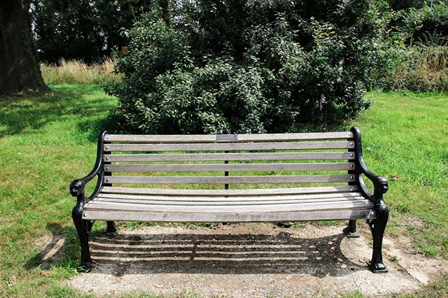 Our lovely park bench