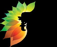 fuze_main_logo transparent.png