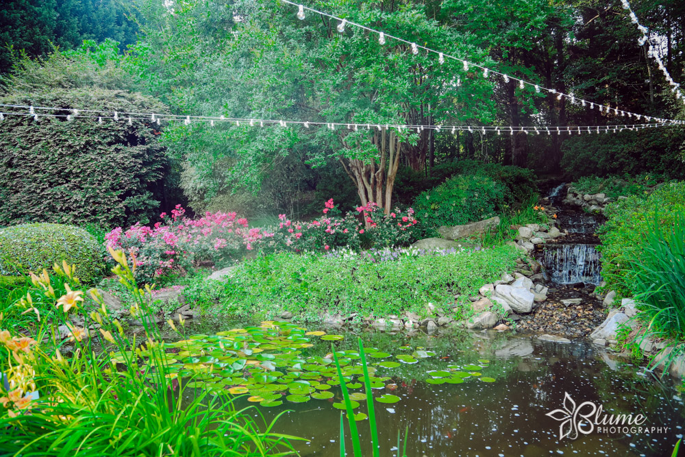 Peaceful Scenery - Garden in Bloom Every SeasonKoi PondPeaceful Waterfall