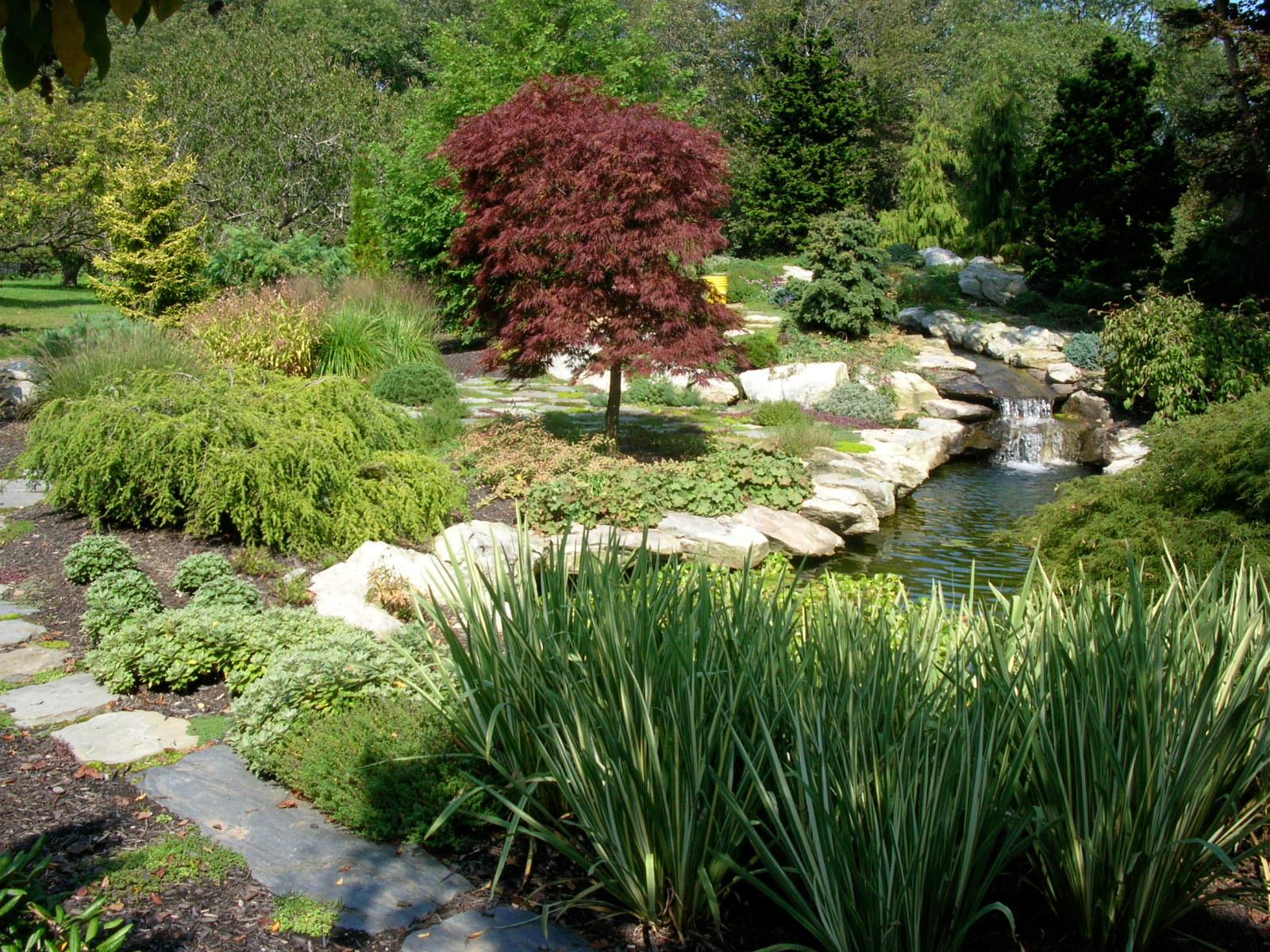 water_garden.jpg