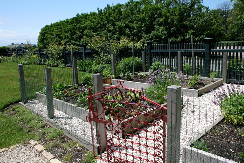 beech_house_veg_garden.jpg