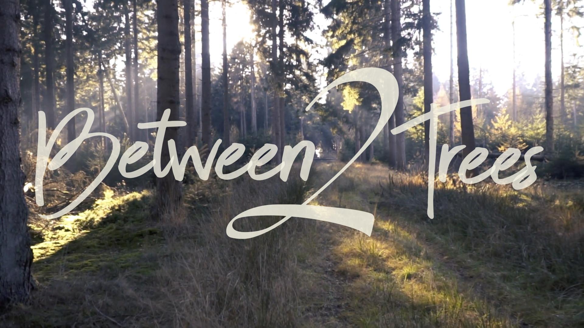 Between 2 Trees Title.001.jpeg