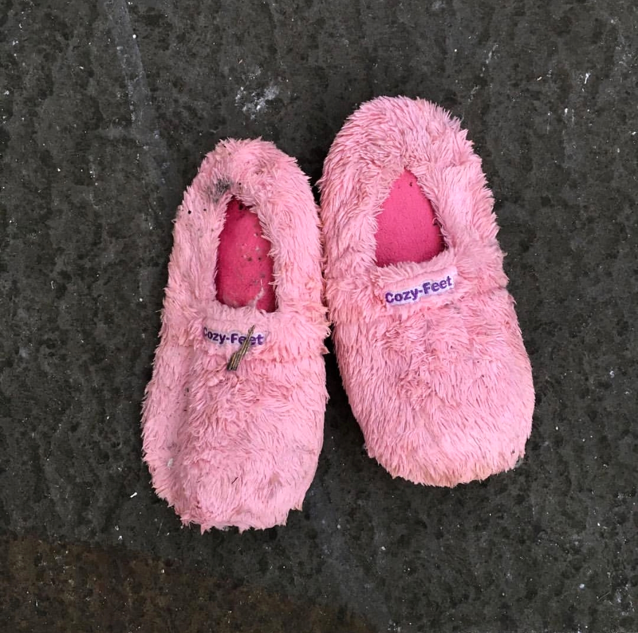 Slippers, Brighton and Hove, 2017