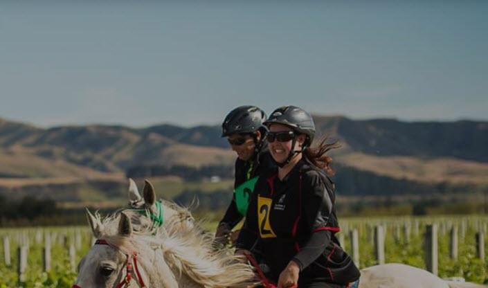 NZ horse.jpg