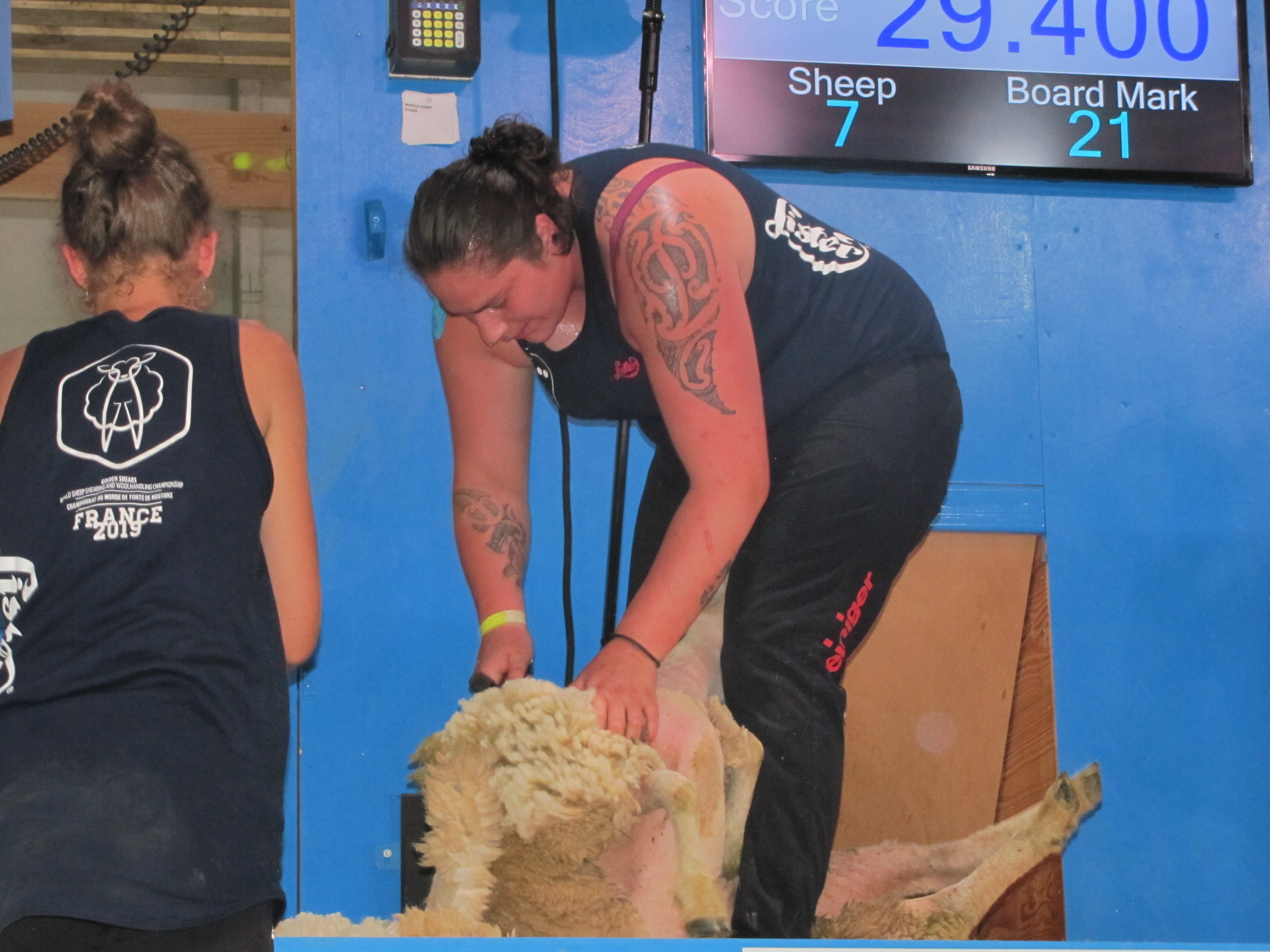 Pagan Karauria in the French All Nations Women's final at the start of World Sheep Shearing and Woolhandling championships week in France. PHOTO/DOUG LAING SSNZ