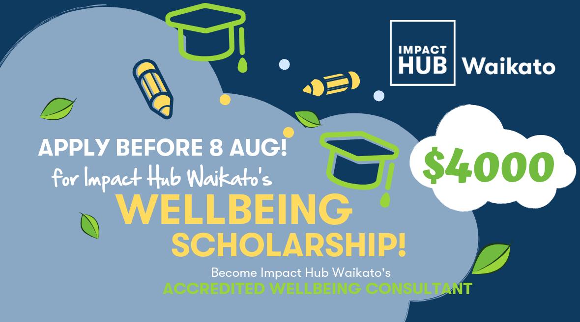 IHW Wellbeing Scholarship LI2 (002).png