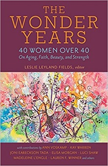 Book Cover The Wonder Years Leslie Smaller.jpg