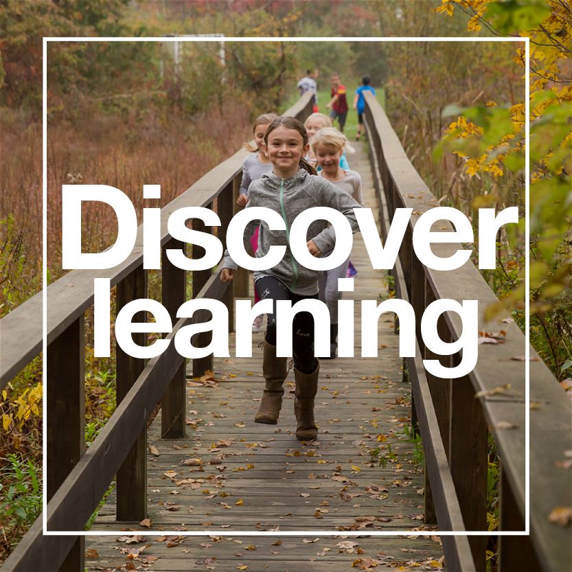 discover-learning.png