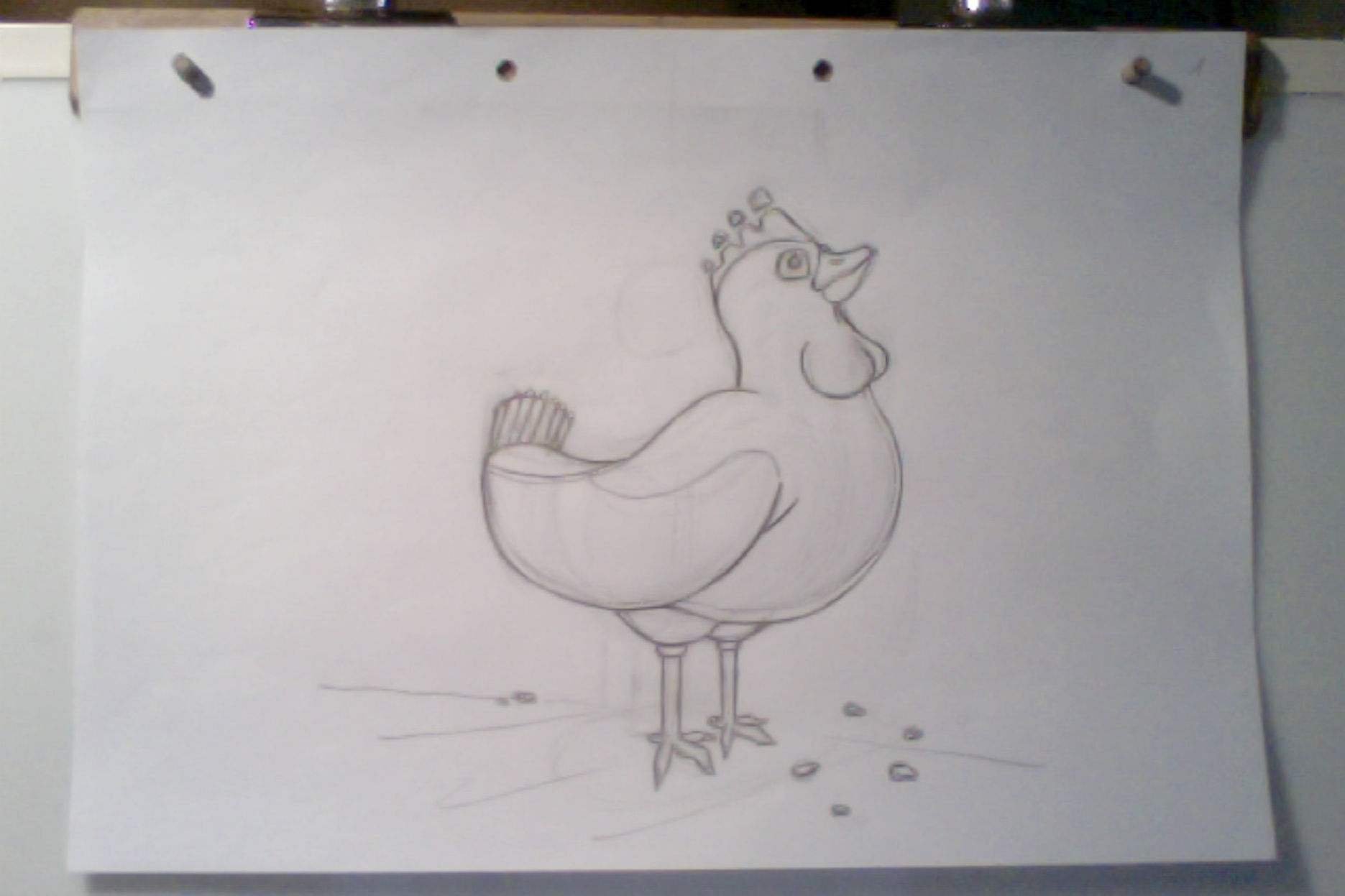 eggs chicken hand drawn rough sketch traditionnal animation 2D film process