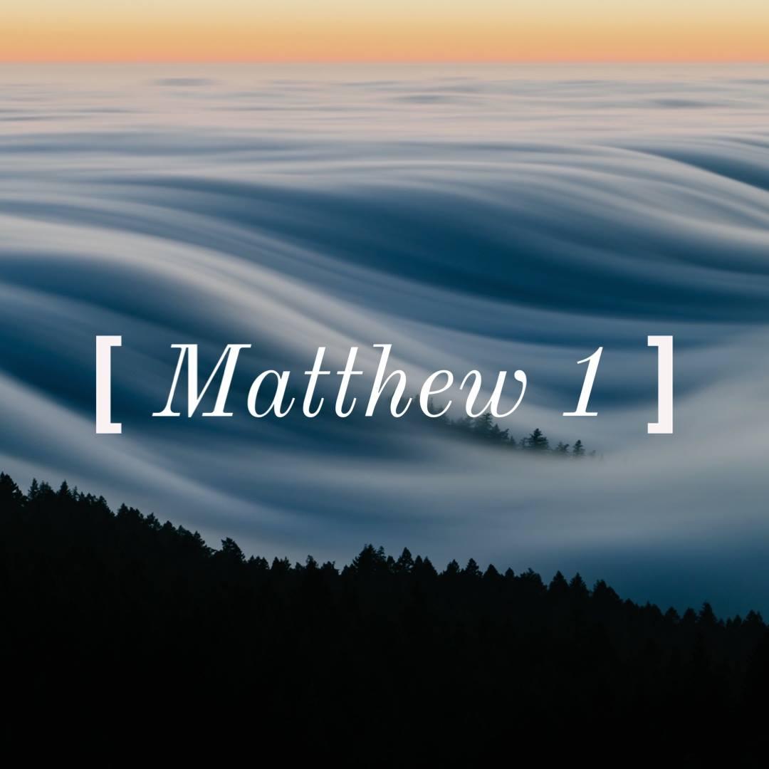 Matt 1.jpg