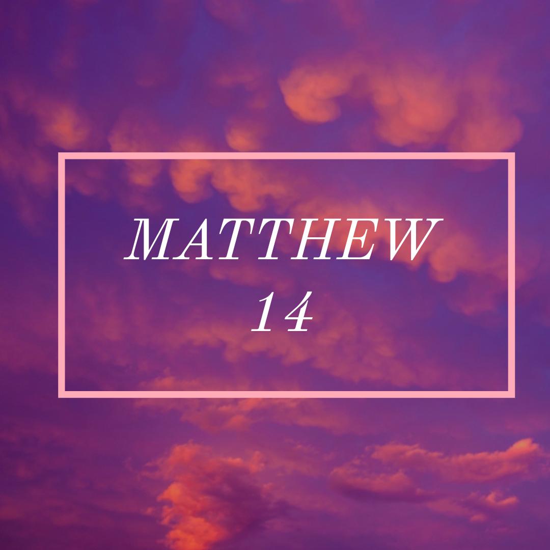Matt 14.jpg