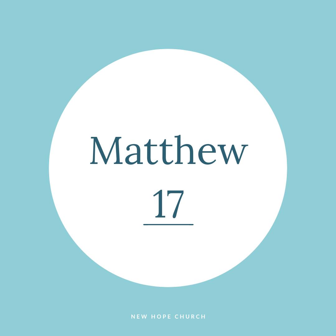 Matt 17.jpg