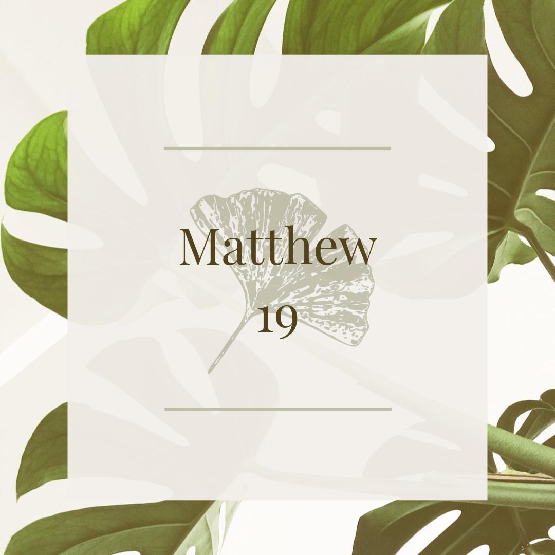 Matt 19.jpg