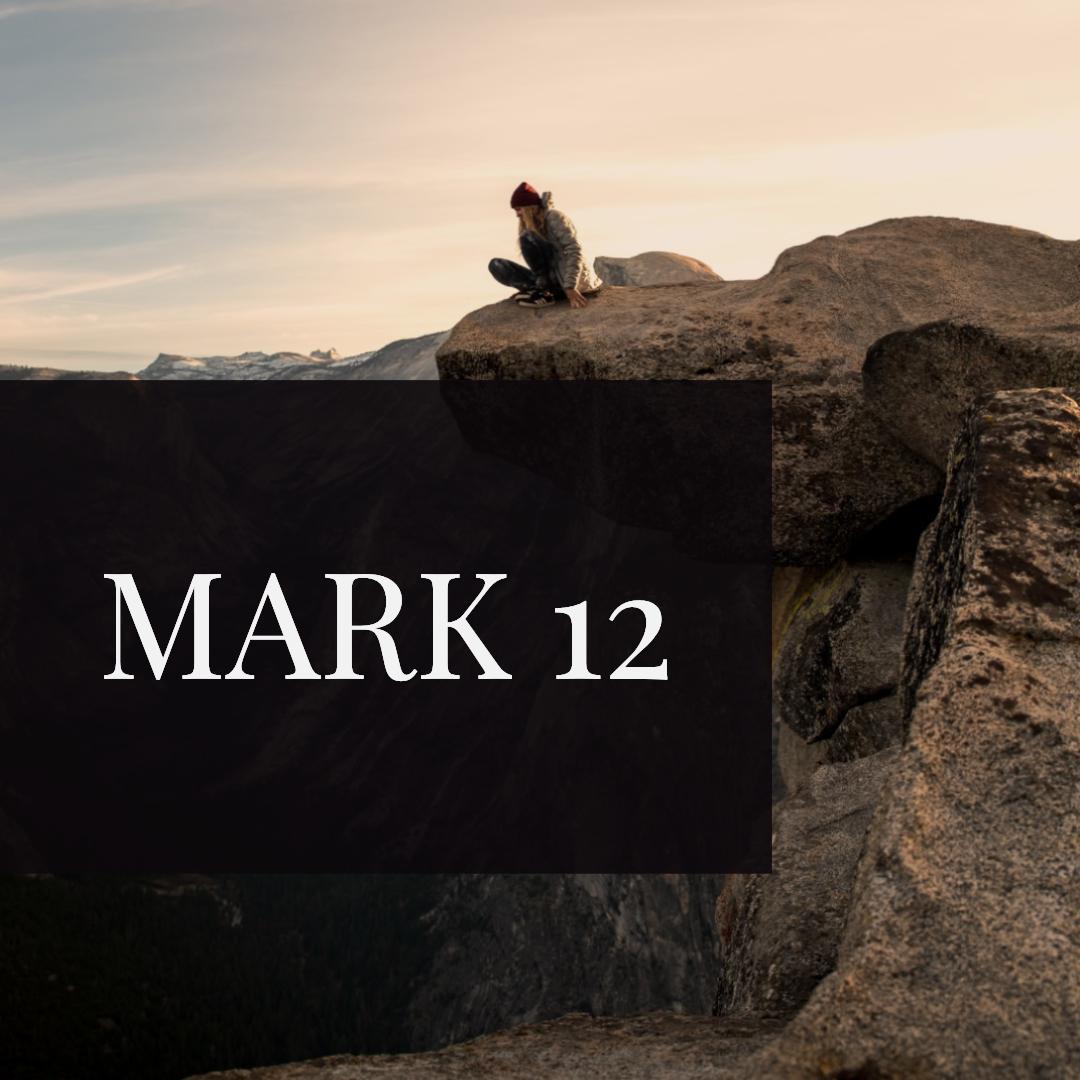 Mark 12.jpg