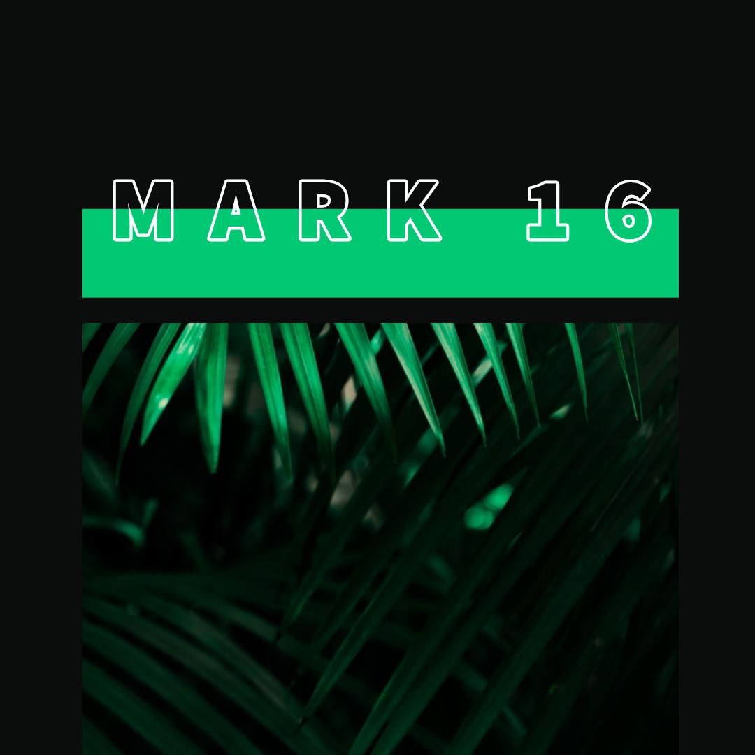 Mark 16.jpg