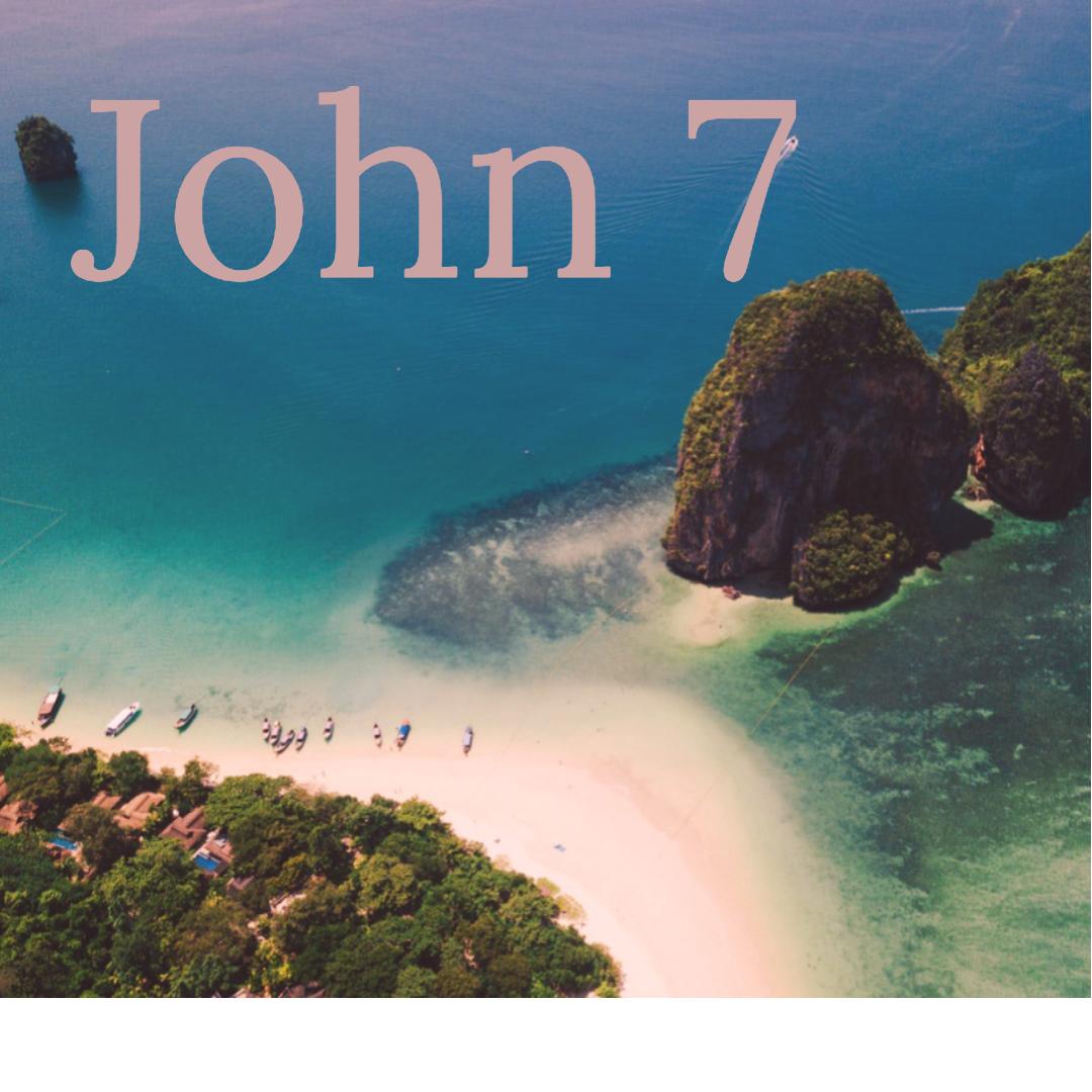 John 7.jpg