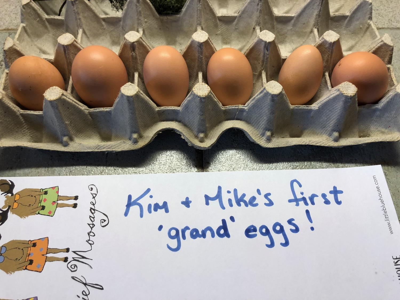 first-eggs.jpg