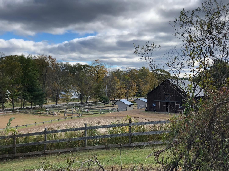 view-towards-barn-clouds.jpg