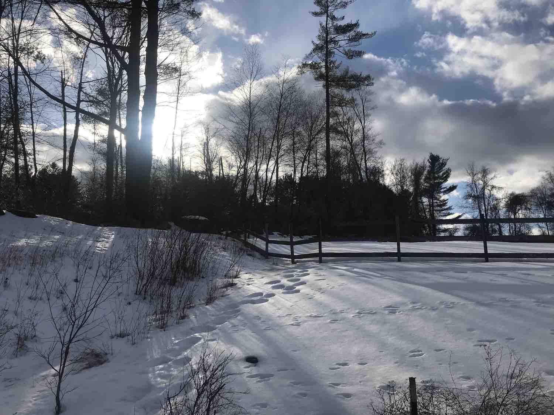 winter-clouds-back.jpg