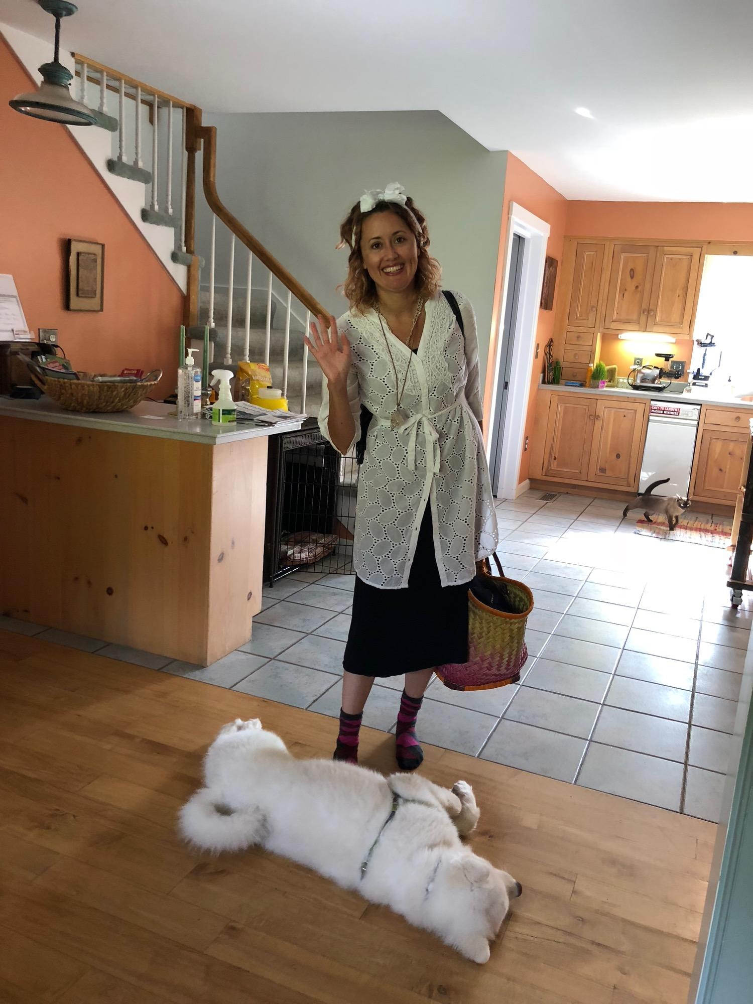 kitchen-w-dog-n-cat.jpg