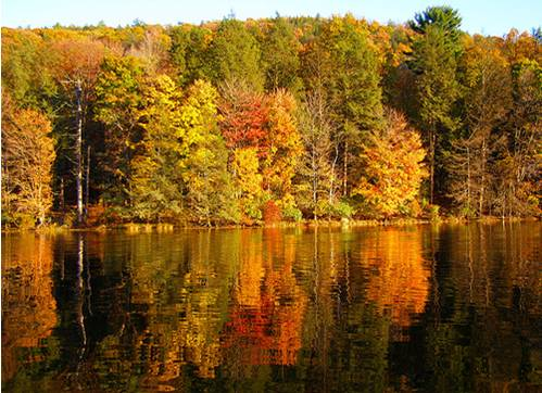 Lake in Fall.jpg