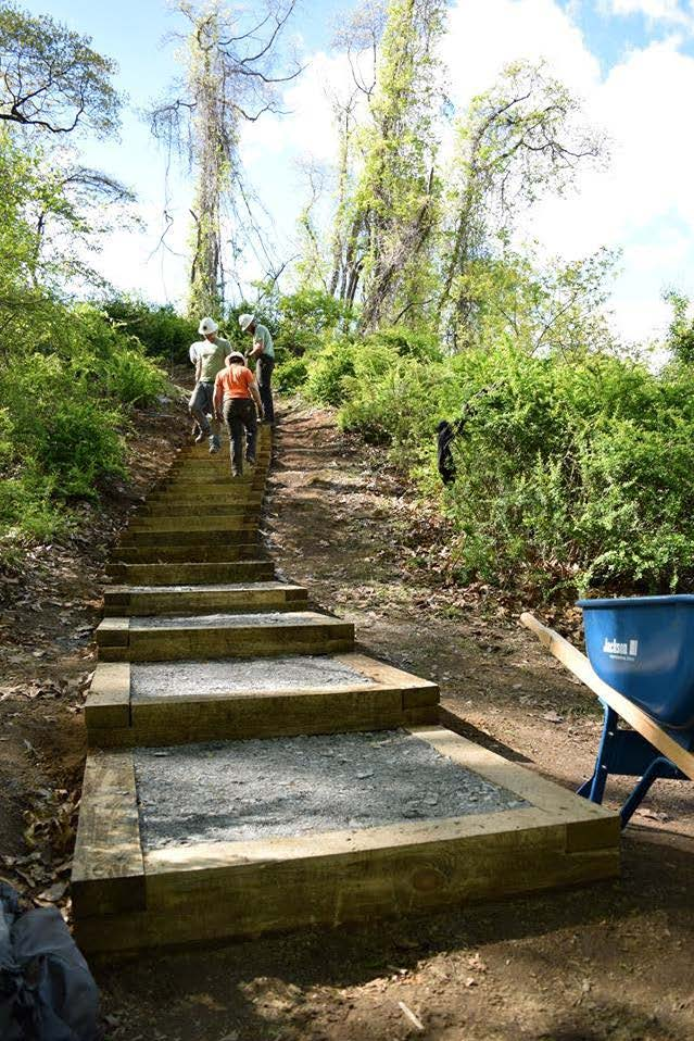 Stairway to a New View - Climb to a dramatic vista at Stony Point.The Need: A staircase at the site, leading to beautiful sites north was in need of repair to reopen visitor access.What Happened Next: With support from the Hudson River Valley Greenway, the Conservancy was able to purchase the supplies and resources needed for the staircase completion. NY State Excelsior Conservation Corp and Rockland Conservation & Service Corps set to work!Our Outcome: Visitors can now climb the staircase, leading to a gazebo with wonderful views of the Hudson River.