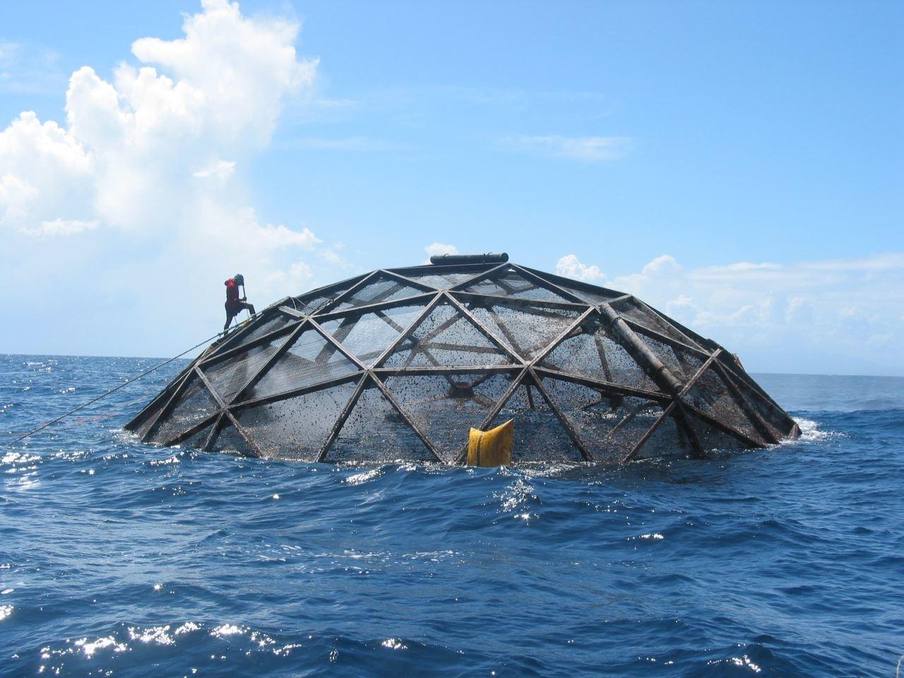 aquaculture pic.jpg