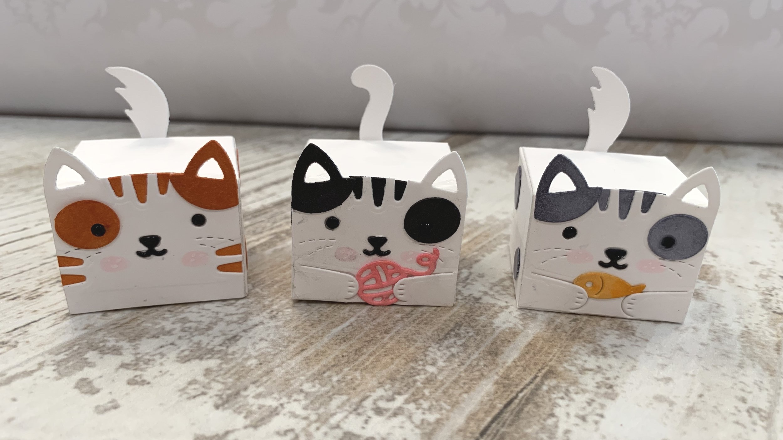 lawn fawn tiny cat gift box|positively jane